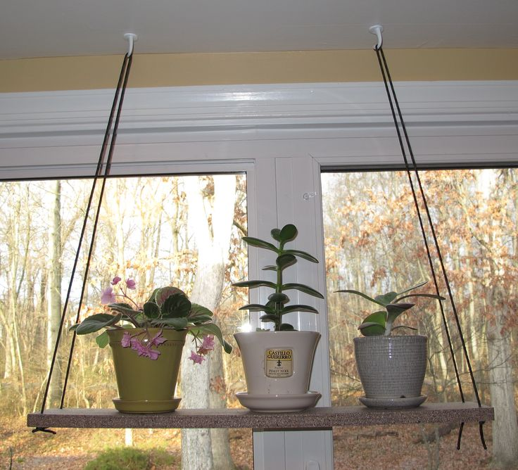 17 best images about window shelves on pinterest open - How to hang plants in front of windows ...