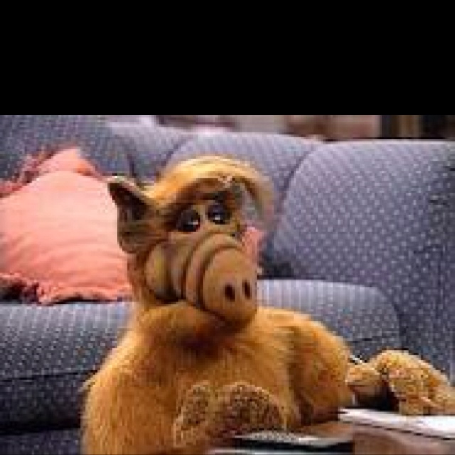 143 Best Images About ALF. THE SERIES On Pinterest