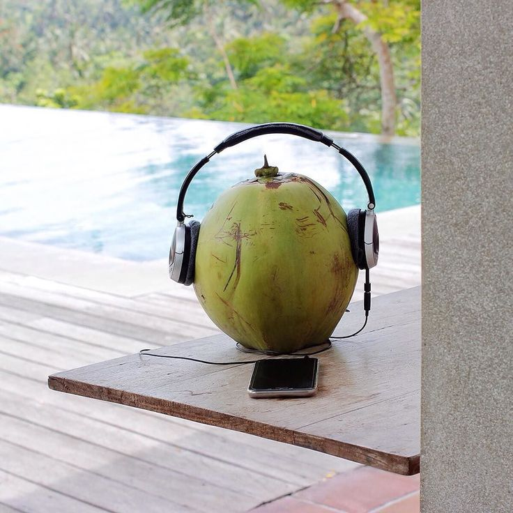 "Caught Coco chillin' out at the pool today listening to @beck's wowest Wow. You can almost see him bobbing his head and singing along ""Wow... what a beautiful day..."" . . . #bismaeight #luxuryhotel #boutiquehotel #ubud #bali #besthotel #bestresort #ubudhotel #balihotel #ubudtrip #balitrip #travelpics #traveling #travellers #luxtravel #worldtraveller #traveldiaries #travelerschoice #travelforlife #hotelgoals #instatravel #igtravel #beautifulhotels #designhotels #infinitypool #coconut…"