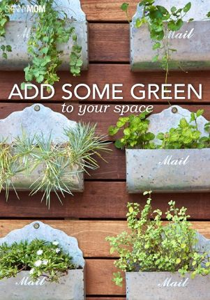 Gain your green thumb no matter where you are by reading this article.