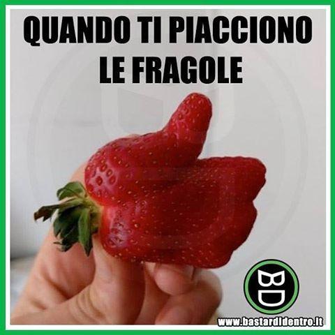 Questa #fragola passa troppo tempo su Facebook! Seguici su youtube/bastardidentro #bastardidentro #frutta www.bastardidentro.it