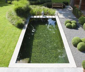 Deze strakke zwemvijver en omliggende tuin werd aangelegd door Cools tuinaanleg. De omliggende grassen en buxuspartijen vormen een mooi geheel met de vijver.