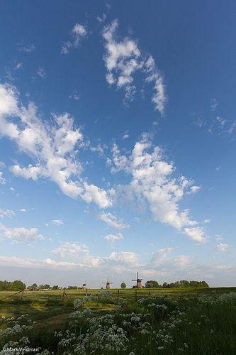 Molens van Rustenburg, vanaf de molendijk gefotografeerd