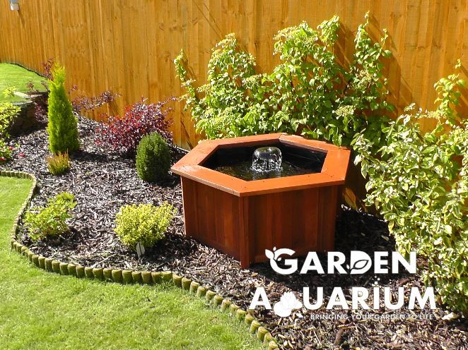 Garden Aquarium Lily   Raised Garden Pond Ideal For Fish Or As A Water  Feature.