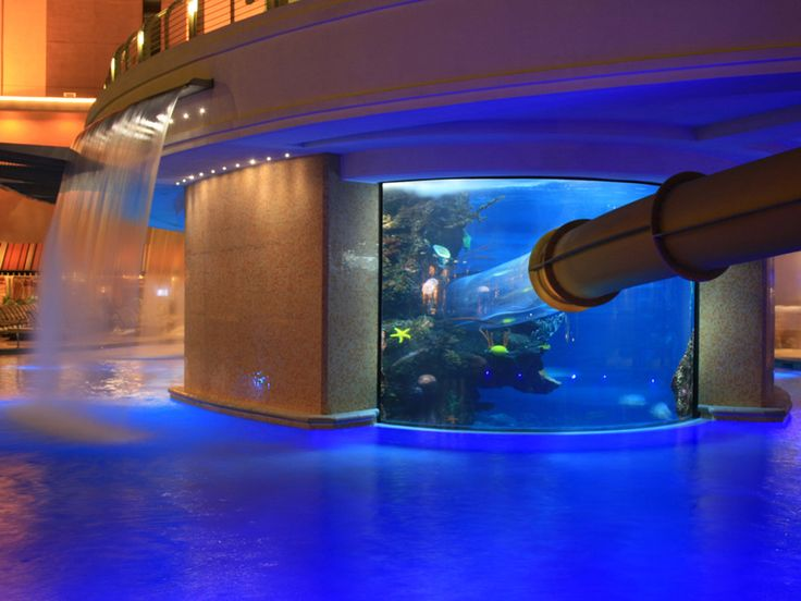 The Tank pool at the Golden Nugget is a pool surrounding a shark tank with a three story water slide that goes through it - Nice!