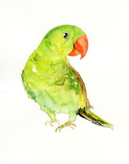 PARROT by DIMDI Original watercolor painting 8x10inch (Vertical orientation)