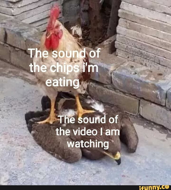 The Sound Of The Chips I M Eating The Sound Of The Video Iam Watching Ifunny Funny Relatable Memes Ecards Funny Sarcasm Funny Relationship Memes