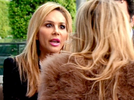 Adrienne Maloof Admits Using Surrogate but Somehow Brandi Glanville's Still at Fault