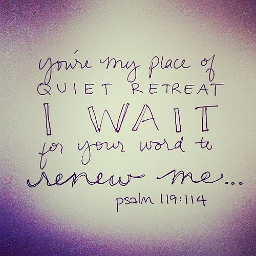 {psalm 119:114} by andrearhowey, via Flickr