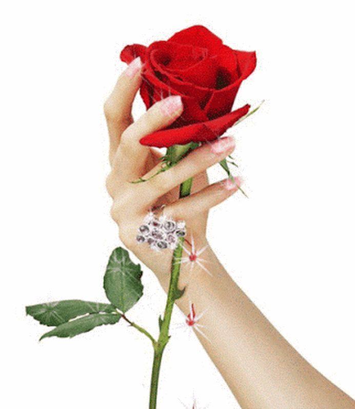 Картинки роза в руке мужские гиф