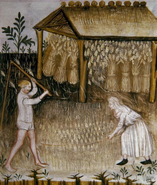 DE BODEM BEWERKEN / Dorsen en het opslaan van schoven ( Tacuinum Sanitatis ) Noord-Italiaans 14e eeuw