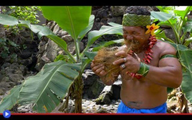 Come aprire il cocco alla maniera samoana Il fisico robusto, un fiore nei capelli, una collana di bacche rosse simili a peperoncini. Bracciali ricavati da foglie di palma, così stretti da sembrare in grado di bloccare la circolazione. E una  #polinesia #frutta #cocco #tutorial