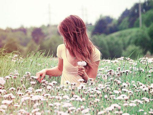 wading through the daisies