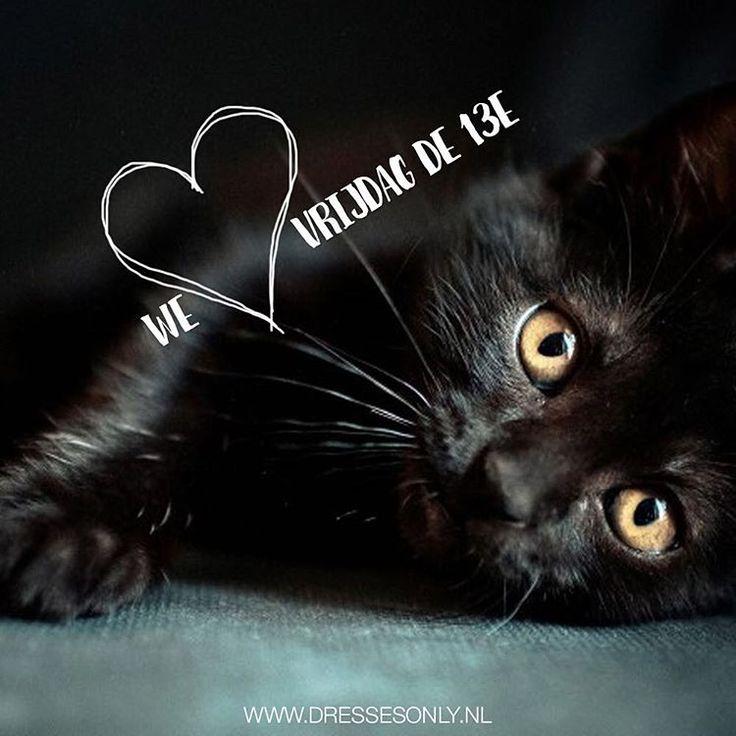 Vrijdag de 13e! No fear! Vind in onze shop de zwarte kat. Ze heeft een kortingscode voor je. Bespaar 13% op je order... Succes met zoeken! #vrijdagdedertiende #zwartekat