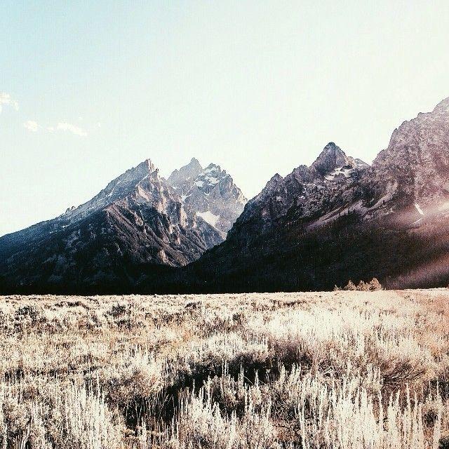 Golden Fields of the Tetons | Griffin Lamb