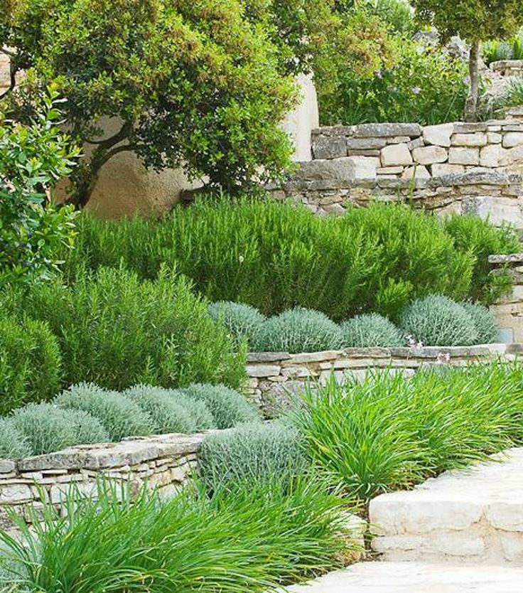 Jardines de estilo por town and country gardens, moderno