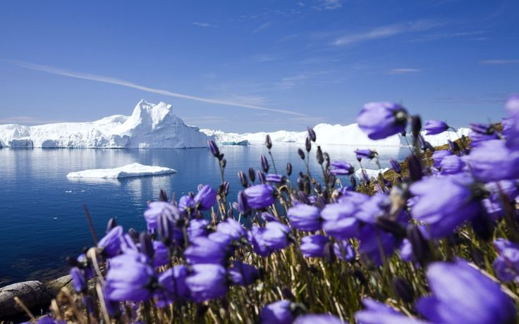 Cool nature widescreen hd wallpapers 02