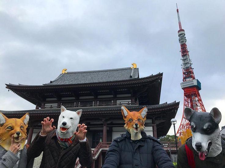 "23 Likes, 1 Comments - えくす たーみねーたー (@tokyoanimalmask) on Instagram: ""増上寺と東京タワー! #アニマルマスク  #アニマルマスク同好会 #狐 #キツネ #白犬 #ハスキー #シベリアンハスキー #増上寺 #東京タワー #animalmask  #dogmask…"""