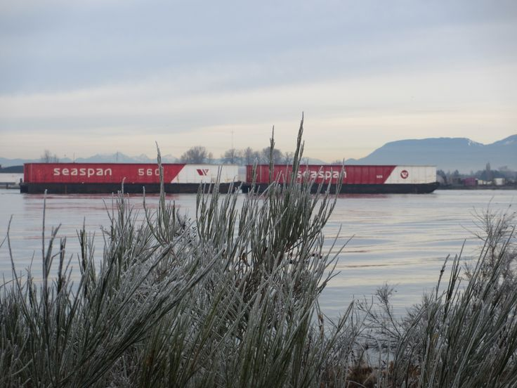 Barges on the Fraser