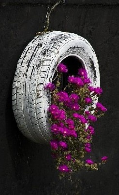 Old tire with flowers growing out of it.