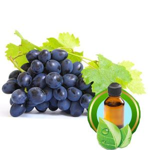 Bulk Grape Seed Carrier Oil Wholesale