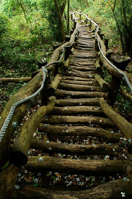 Tai Hang Mountain, Taiwan. I want stairs like this.
