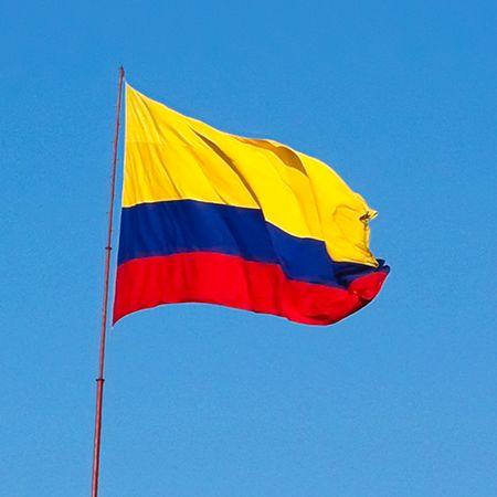 Yo vi la bandera de Colombia.