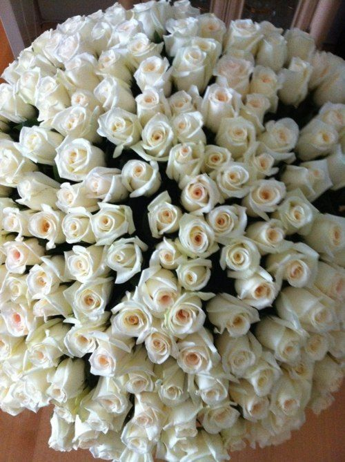 ZsaZsa Bellagio: Language Of Flowers, White Flowers, Gorgeous Flowers, Love Language, White Rose, White Fashion, Bouquets, Pretty Flowers, White Blouses