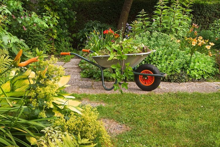 REALTOR® Greg Steele tells you to get outdoors this summer and improve your curb appeal with a yard makeover.