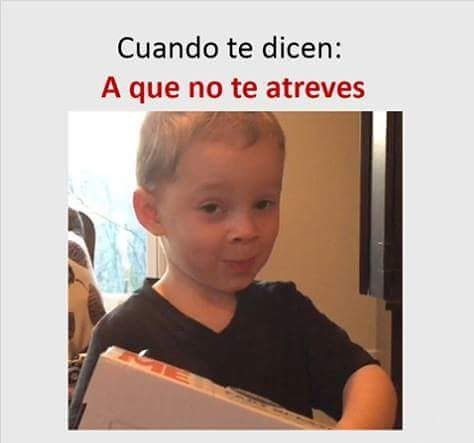 Que no ????? ... #memes #chistes #chistesmalos #imagenesgraciosas #humor http://www.megamemeces.com/memeces/imagenes-de-humor-vs-videos-divertidos