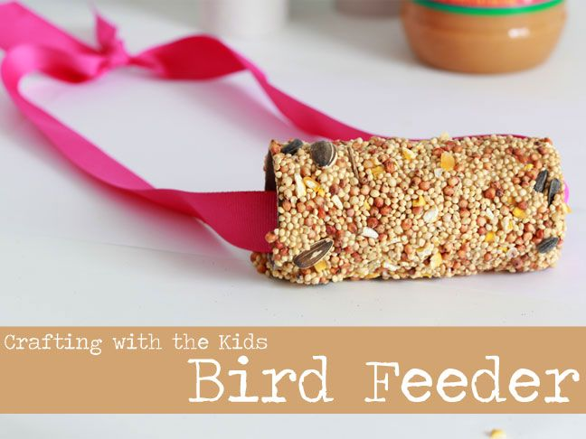 Winter bird feeder craft toilets activities and for kids for Toilet paper tube bird feeder