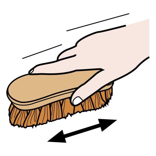 Cepillar con cepillo de mano | ARASAAC. Terapia ecuestre ...