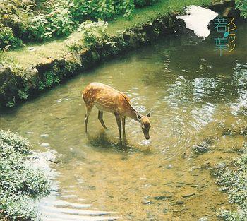 こちらはスピッツ「若葉」のCDジャケットになった写真です。奈良で撮られた写真だそうですが、どことなく外国の雰囲気を醸し出しています。
