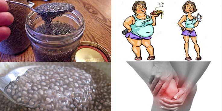 I semi di Chia sono uno degli alimenti più potenti di tutto il mondo. Sono…