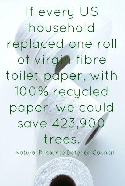 21 best speak for the trees images on pinterest for Toilet paper roll challenge