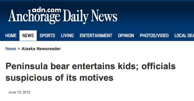 When officials were suspicious of this entertaining bear. | The 30 Most Head-Scratchingly Bizarre News Headlines Of All Time