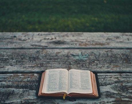 Wer Hat Die Bibel Geschrieben