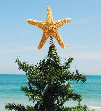Starfish tree topper- makes me think of my favorite place to spend the holidays! Miss you @Emily Wax