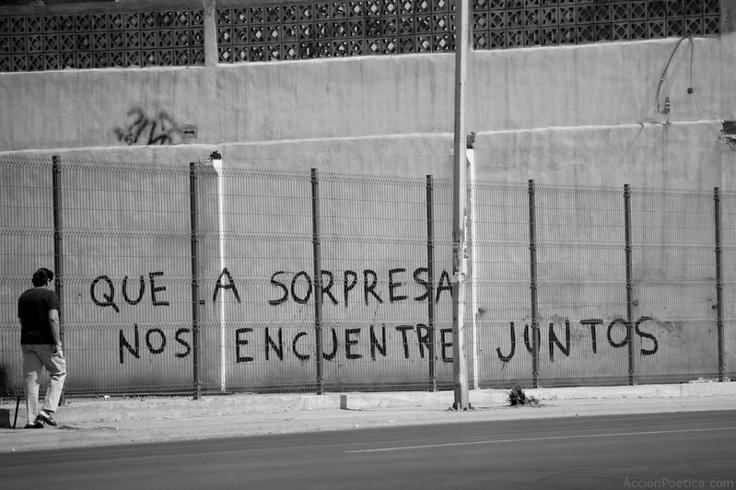 """""""Que la sorpresa nos encuentre juntos"""". Acción Poética"""