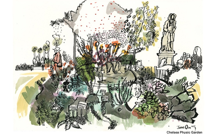 James Oses Illustrator