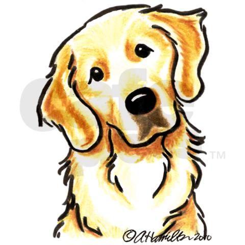 golden retriever face drawing