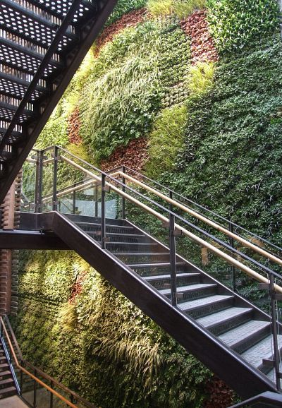An Awesome Living Green Wall Consisting Of 14,000 Different Plants At An  Anthropologie Store .