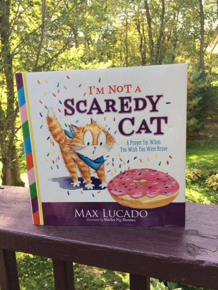 Scaredy Cat Book Review