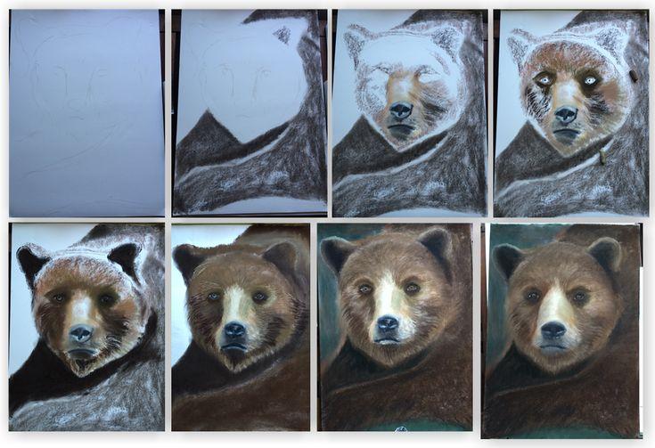 medvěd náhled
