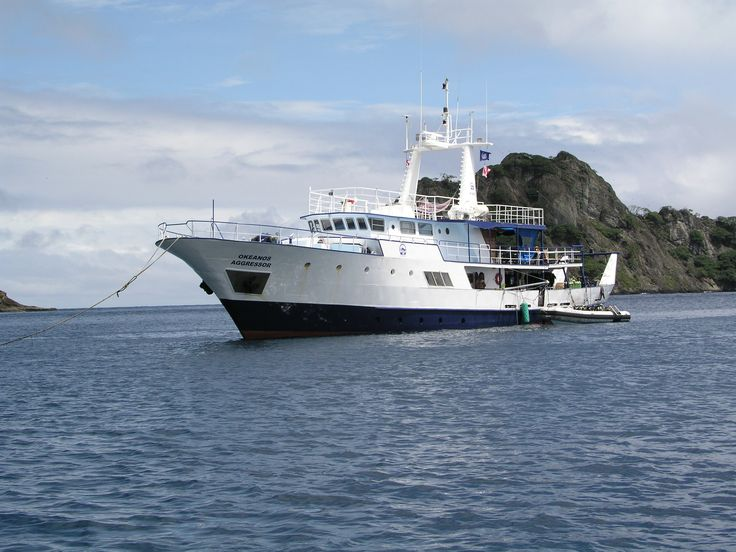 Die spektakulären Tauchgebiete von Cocos Island sind bekannt für die Sichtung von Großfischen wie Hammerhaie, Silberspitzenhaie, Seidenhaie, Walhaie, Mantas, Delphine und Segelfische.  #cocosokeanos #tauchen #wirodive #sommer #sonne #meer # schnorcheln #wasser #lebedeinleben
