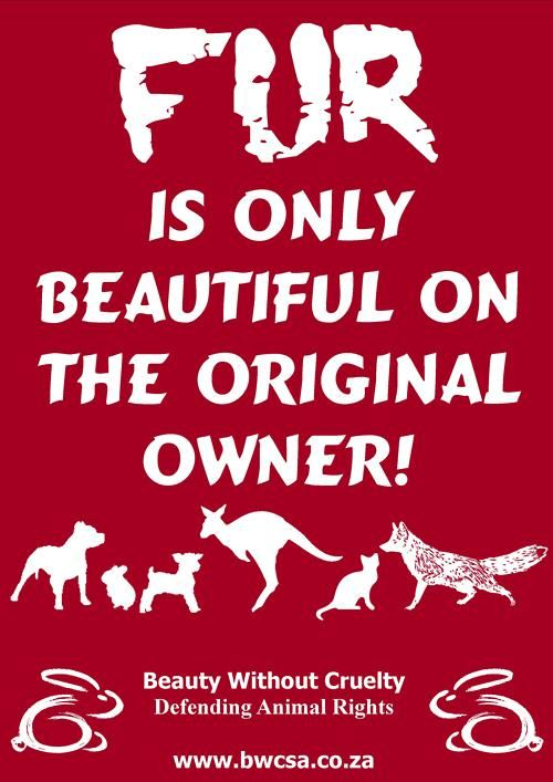 Pinner wrote: and that's the truth! There are some fab synthetics that take far less care or expense if you admire their look. Avoid real fur or feathers with a passion.