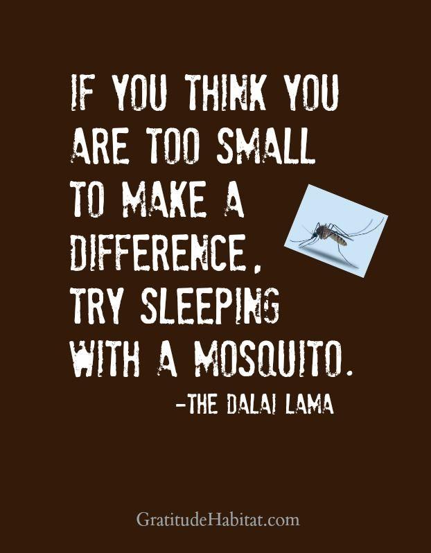 You make a difference. Visit us at: www.GratitudeHabitat.com  #quotes-inspiration #quotes-Dalai-Lama