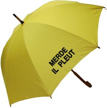 i am a greedy girl.: merde il pleut umbrella.