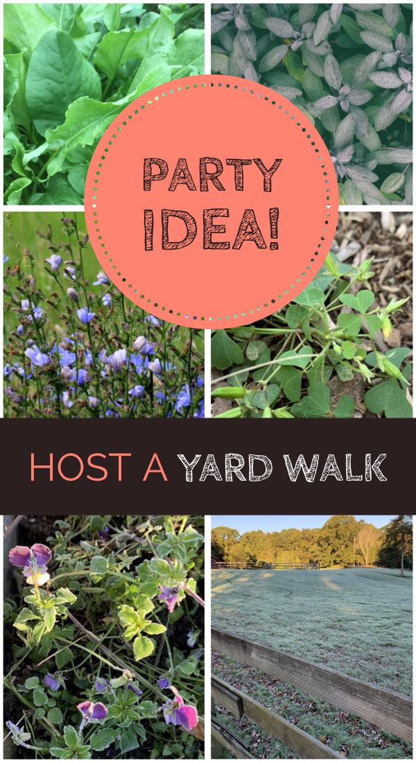 I Did Not Know People Did This What Is A Yard Walk Party Ideas