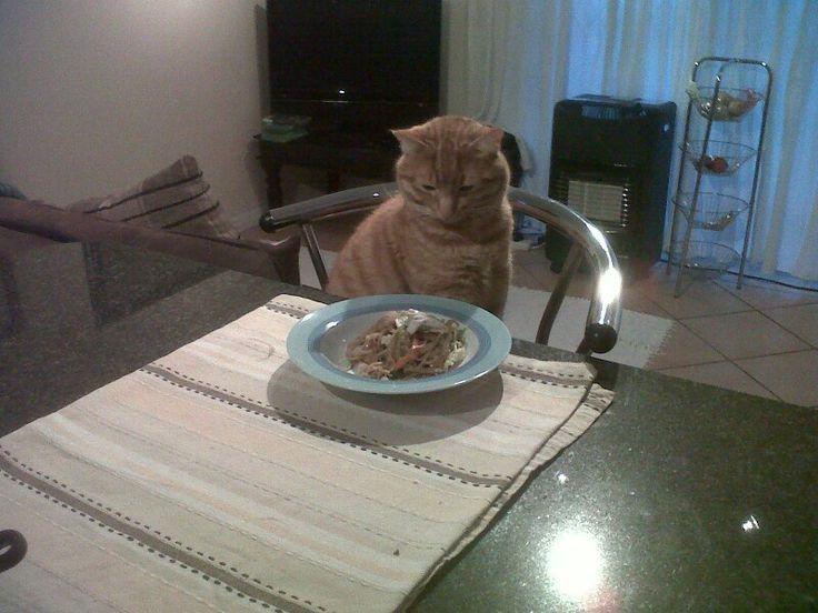 What's furrr supper